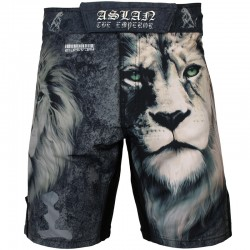 Шорты MMA Btoperform aslan